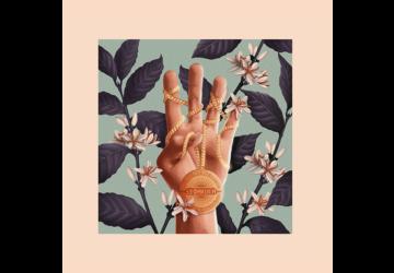 Leoniden Debütalbum